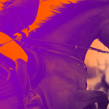 Acquisition of an equestrian business in West Europe